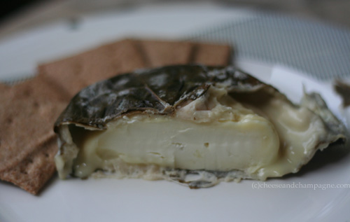 Ledyard, leaf-wrapped, sheeps-milk cheese